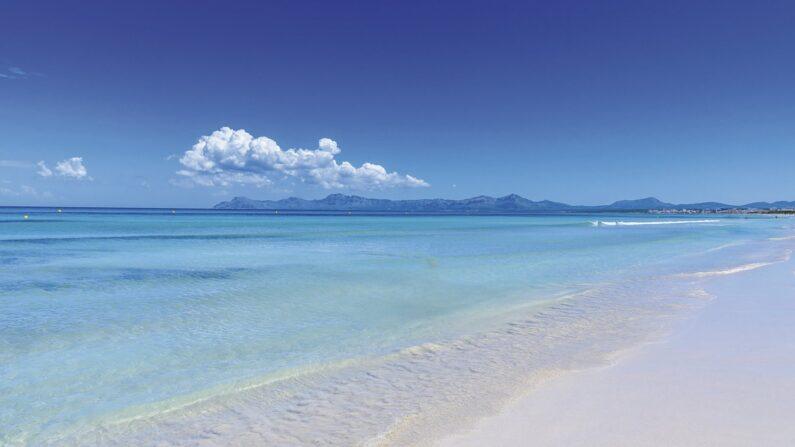 descubre-nuestros-hoteles-en-playa-de-muro-mallorca-6ow0p97er8